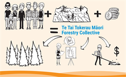 Government welcomes Māori forestry collective announcement