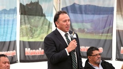 Maori forestry to aid region